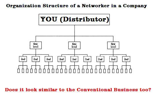 MLM Organization