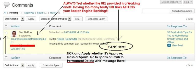 Moderating Pending Message on WordPress