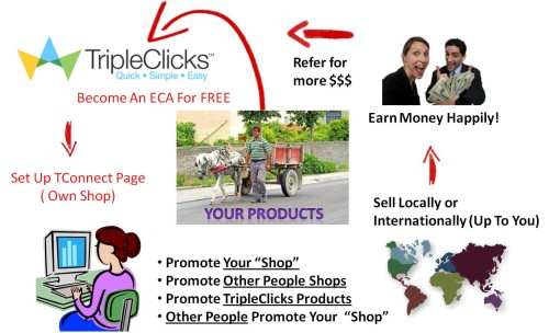 Become An E-Commerce Affiliate With SFI