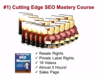 Cutting-Edge-SEO-Mastery-in-IM-Guru-PLR-Firesale