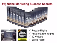 Niche-Marketing-Success-Secrets-in-IM-Guru-PLR-Firesale